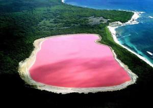 розовые озера планеты